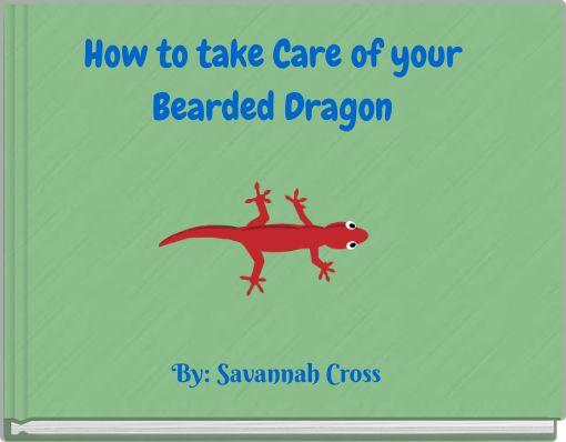 How to take Care of your Bearded Dragon