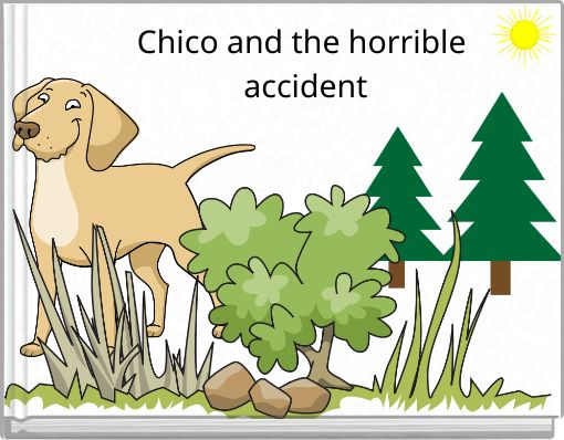 Chico and the horrible accident