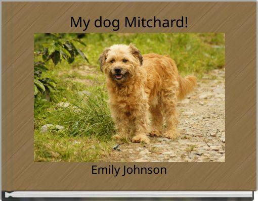My dog Mitchard!