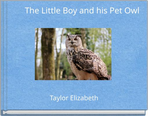 The Little Boy and his Pet Owl