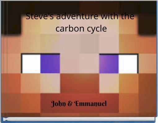 Steve's adventure with the carbon cycle