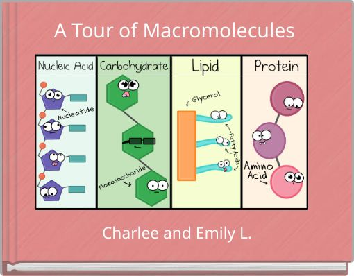 A Tour of Macromolecules