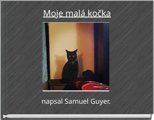 Moje tlustá černá kočička
