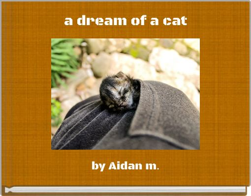 a dream of a cat