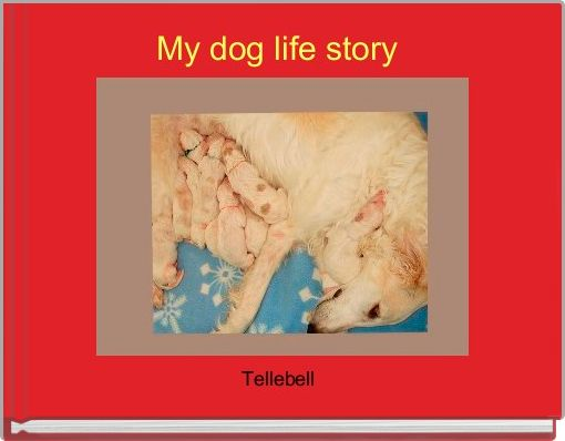 My dog life story