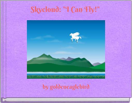 Skycloud: