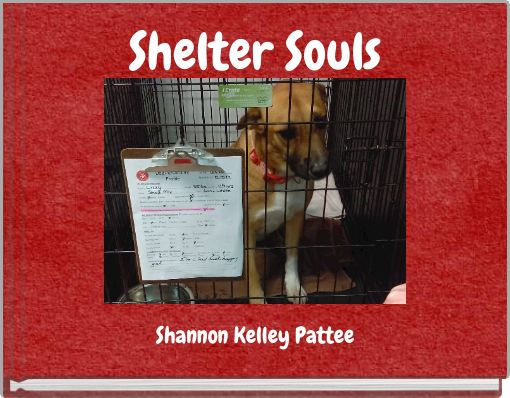 Shelter Souls