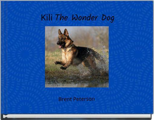 Kili The Wonder Dog