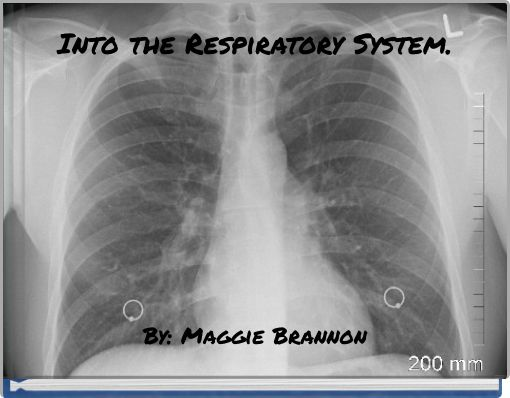 Into the Respiratory System.