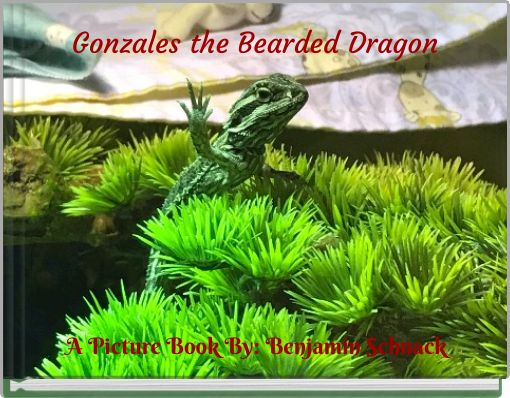Gonzales the Bearded Dragon