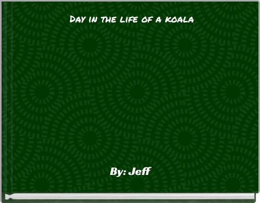 Day in the life of a koala