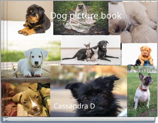 Dog picture book
