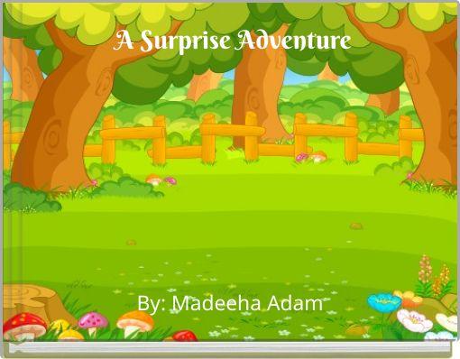 A Surprise Adventure