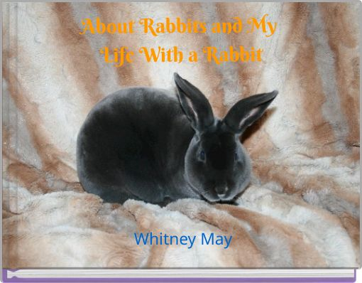 About Rabbits and My Life With a Rabbit