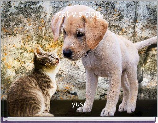 cat v.s dog