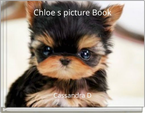 Chloe s picture Book