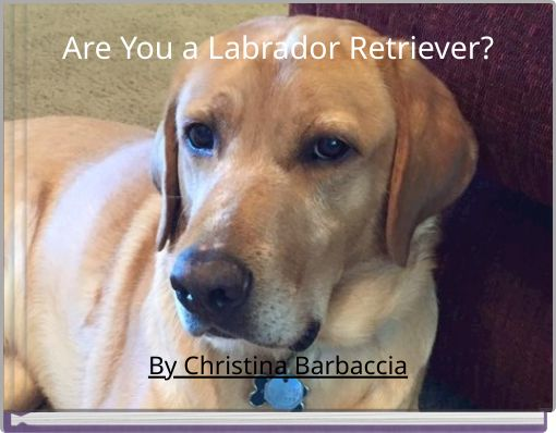 Are You a Labrador Retriever?