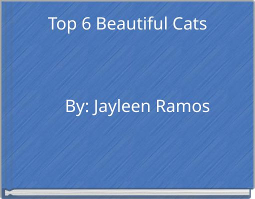 Top 6 Beautiful Cats