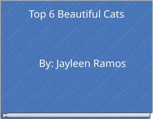 Top 6 Beautiful Cats