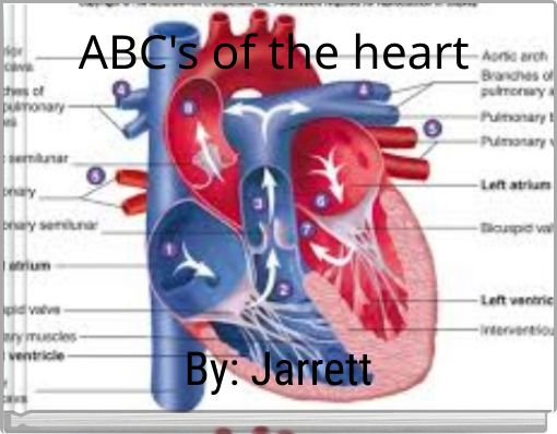 ABC's of the heart