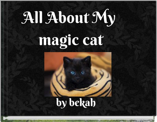 All About  My magic cat