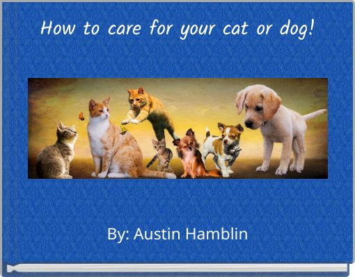 How to care for your cat or dog!