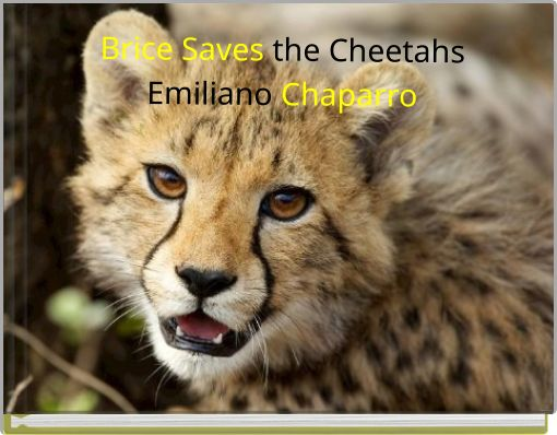 Brice Saves the CheetahsEmiliano Chaparro