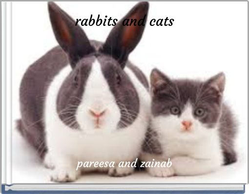 rabbits and cats