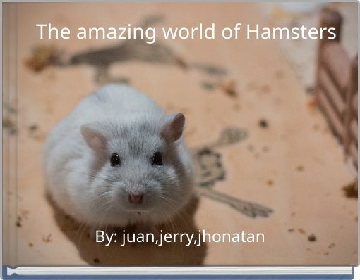 The amazing world of Hamsters