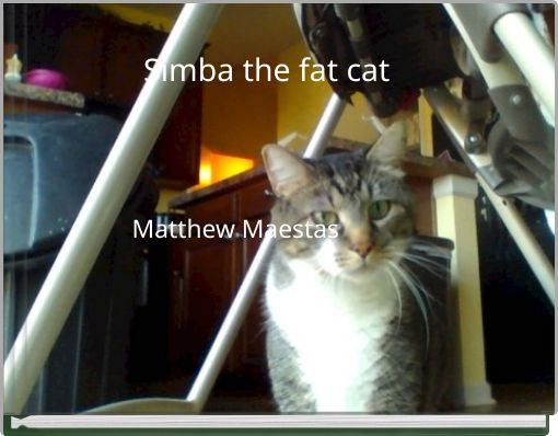 Simba the fat cat