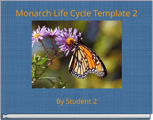 Monarch Life Cycle Template 2