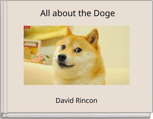 All about the Doge