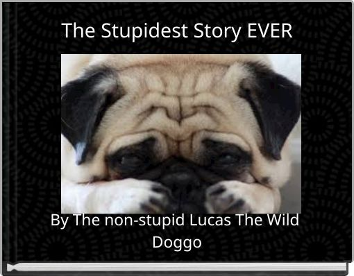 The Stupidest Story EVER