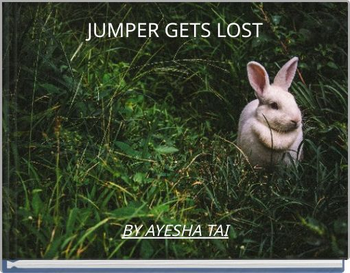 JUMPER GETS LOST