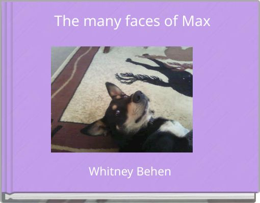 The many faces of Max