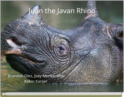 Juan the Javan Rhino