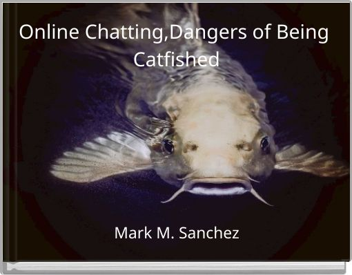 Online Chatting,Dangers of Being Catfished