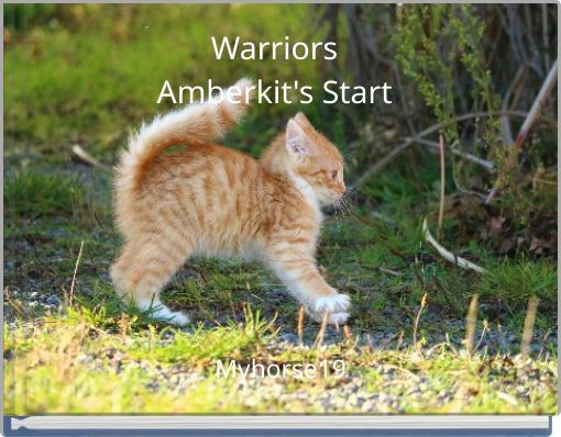 WarriorsAmberkit's Start