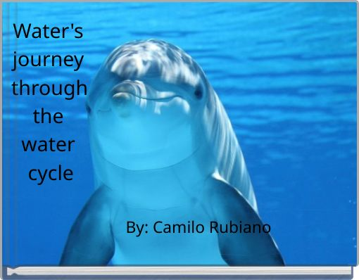 Water's journey through the water cycle