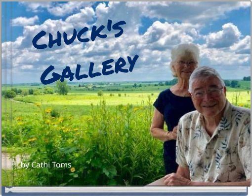 Chuck's    Gallery