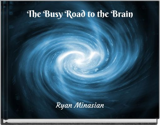 The Busy Road to the Brain
