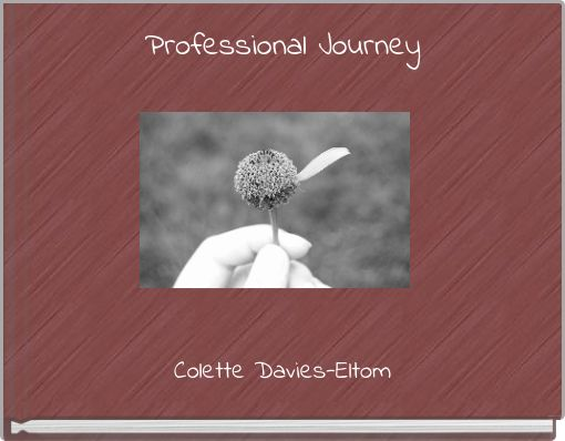 Professional Journey