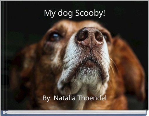 My dog Scooby!