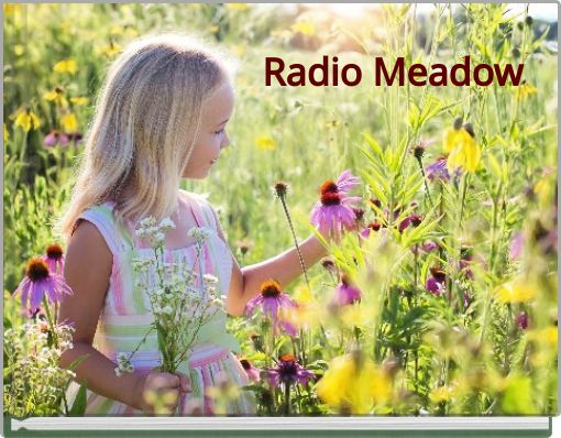 Radio Meadow