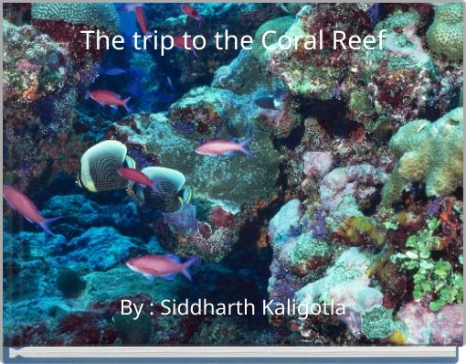 The trip to the Coral Reef