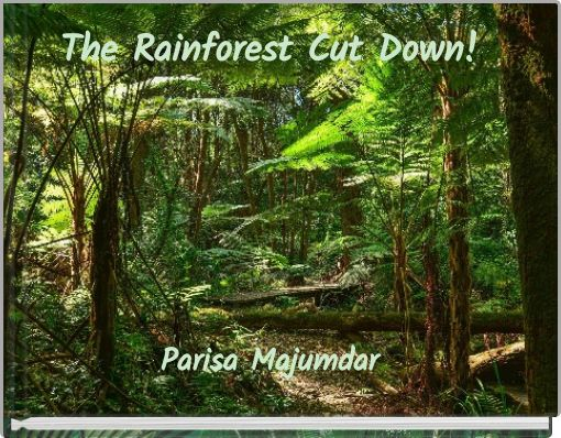 The Rainforest Cut Down!