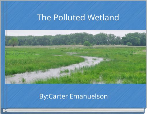 The Polluted Wetland