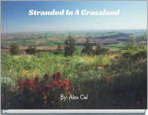 Stranded In A Grassland