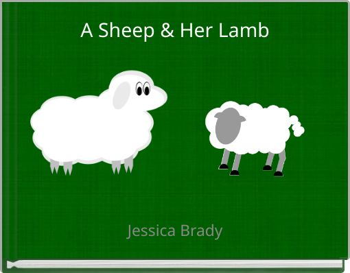 A Sheep & Her Lamb