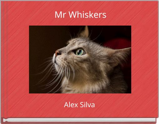 Mr Whiskers